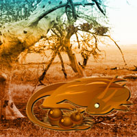 Free online flash games - Africa Forest Escape game - WowEscape