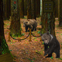 Free online flash games - Bear Forest Escape game - Games2Rule