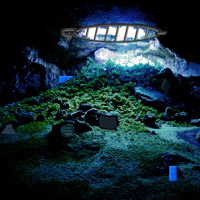 Free online flash games - Cave Forest Escape game - Games2Rule