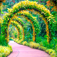Free online flash games - City Botanic Garden Escape game - WowEscape