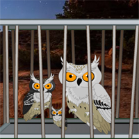Free online flash games - Desert Great Basin Owl family Rescue game - WowEscape