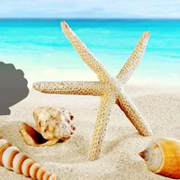 Free online html5 games - Fantasy Conch Beach Escape game