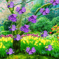 Free online flash games - Find the Kurinji Flower Tree game - WowEscape