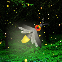 Free online html5 games - Fireflies Night Forest Escape game - Games2rule