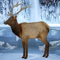 Free online flash games - Frozen Land Elk Rescue game - WowEscape