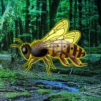 Free online html5 games - Giant Wasp Forest Escape game - Games2rule