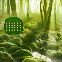 Free online flash games - Green forest lizard escape