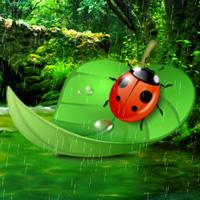 Free online flash games - Ladybug Rainforest Escape game - WowEscape
