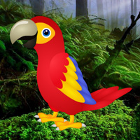 Free online html5 games - Macaw Green Forest Escape game - Games2rule