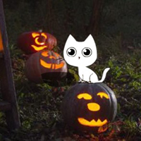 Free online flash games - Pumpkin Night Forest Escape game - WowEscape