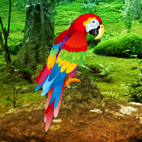 Free online flash games - Scarlet Macaw Forest Escape game - WowEscape