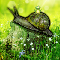 Free online html5 games - Snail Forest Escape game
