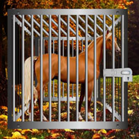 Free online flash games - Starving Horse Rescue game - Games2Rule