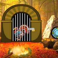 Free online flash games - Turkey Waterfall Forest Escape game - WowEscape