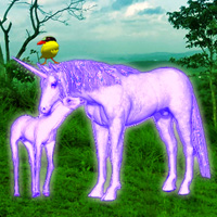 Free online flash games - Unicorn Fantasy Forest Escape game - WowEscape