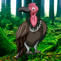 Free online html5 games - Vulture Forest Escape game - Games2rule