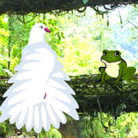 Free online flash games - Wild Parrots Rescue game - WowEscape