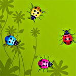 Free online flash games - Color Bugs game - WowEscape