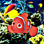 Free online flash games - Find the Nemo game - WowEscape