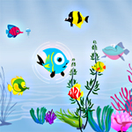 Free online flash games - Fish Food game - WowEscape