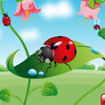 Free online flash games - Hidden Bugs game - WowEscape