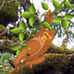 Free online flash games - Hidden Monkey game - WowEscape