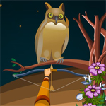 Free online flash games - Hidden Owls game - WowEscape