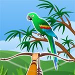 Free online flash games - Hidden Parrots game - WowEscape
