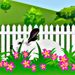 Free online flash games - Hidden Rabbit game - WowEscape