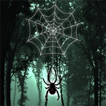 Free online flash games - Hidden Spider game - WowEscape