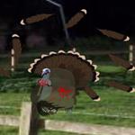 Free online flash games - Hidden Turkey game - WowEscape