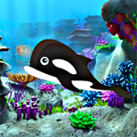 Free online flash games - Hidden Whales game - WowEscape
