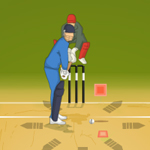Free online flash games - T20 Worldcup 2012 game - WowEscape
