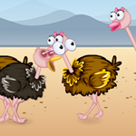 Free online flash games - Ostrich Lovely Kiss game - WowEscape
