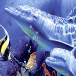Free online flash games - Spot the Difference-Underwater game - WowEscape
