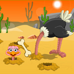 Free online flash games - Beat The Ostrich game - WowEscape