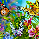 Free online flash games - Find the Spot-Butterflies game - WowEscape