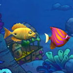 Free online flash games - Tuna Growing game - WowEscape