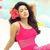 Free online flash games - Hidden Target-Priyanka Chopra game - WowEscape