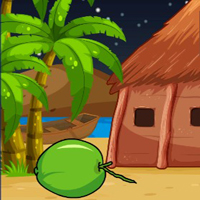 Free online flash games - G2J Tawny Owl Escape From Hut