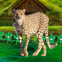 Free online flash games - Wowescape Save The Mountain Cheetah game - WowEscape