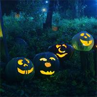 Free online flash games - HOG Halloween Hidden Candy Basket game - WowEscape