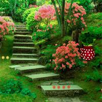 Free online flash games - Backyard Flower Garden Escape game - WowEscape
