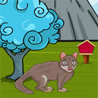 Free online flash games - Games2JollyTiger Quoll Rescue game - WowEscape