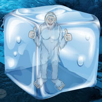 Free online flash games - Escape Game Find the Himalayan Yeti Wowescape game - WowEscape