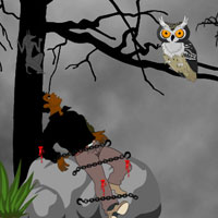 Free online flash games - Escape Reporter from Devil Forest game - WowEscape