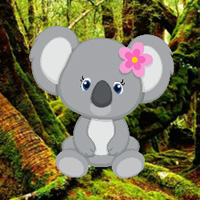 Free online flash games - WowEscape Save The Baby Koala game - WowEscape
