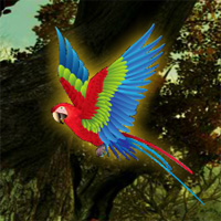 Free online flash games - Wow Macaw Fantasy Escape game - WowEscape
