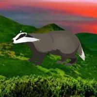 Free online flash games - Badger Mountain Escape HTML5