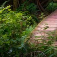 Free online flash games - Enchanted Jungle Fun Escape game - WowEscape